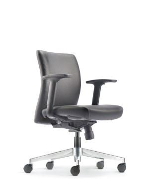 ERGO EXECUTIVE LOW BACK CHAIR-FABRIC