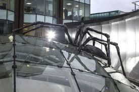 roof spider glass 11