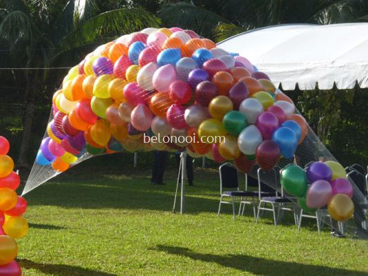 Balloon Netting