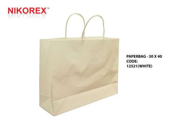 12521 PAPER BAG 30x40 (WHITE) 10PCS