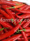 Small red Chili  Cut and Processed Vegetables