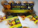 Eggs Product SP Products