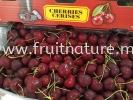 Cherry Canada Cherries Fruits