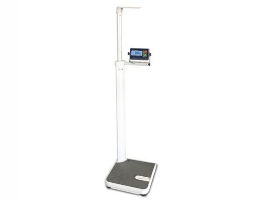 HH300 HiWeigh Digital Scale HH 300kg 50g