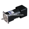 AC Speed Control & Brake Motor 180W AC Speed Control & Brake Motor GGM