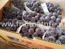 Grape Black Aurora Japan Grapes Fruits