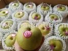 Pear Century Totorri Japan Pears Fruits