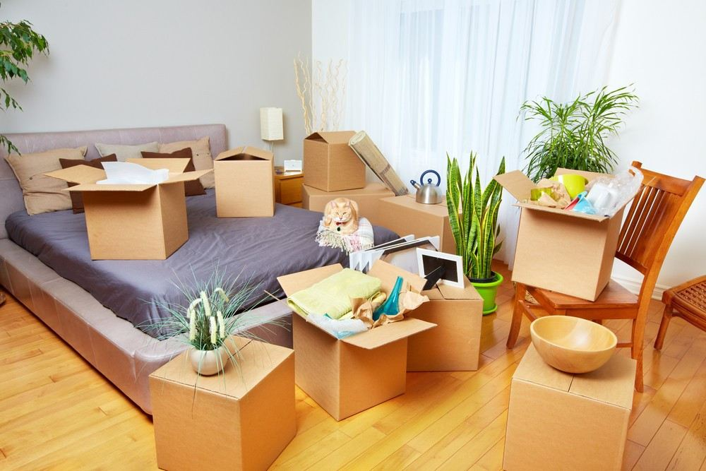 Move-in/out Cleaning Services