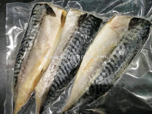 NORWAY SABA MACKEREL FILLET