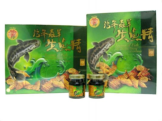 FU GUI ESSENCE OF FISH WITH CORDYCEPS