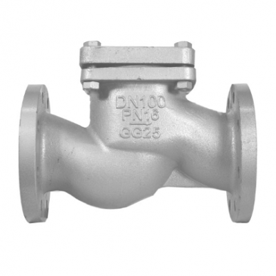 Interflow Check Valve PN16