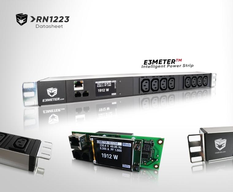 RN1223 (Datasheet) E3METER RNX Power Meters
