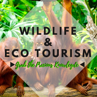 WILDLIFE & ECO TOURISM