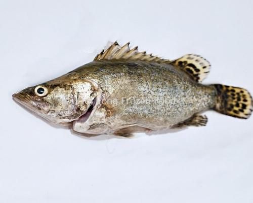 Kwai Fah Fish