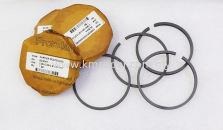 5F20481-CARRIER CARLYLE 5F OPEN TYPE COMPRESSOR PISTON RING KIT (8PCS EACH OIL & COMP RING/BOX)