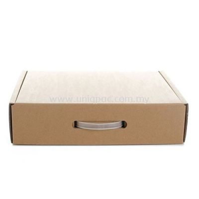 Die Cut Box With Plastic Handle