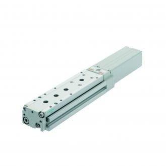 Electric actuator (ELCR)