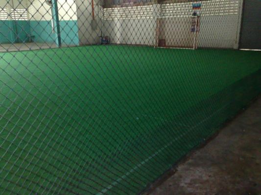Artificial Completed Grass Project Refer