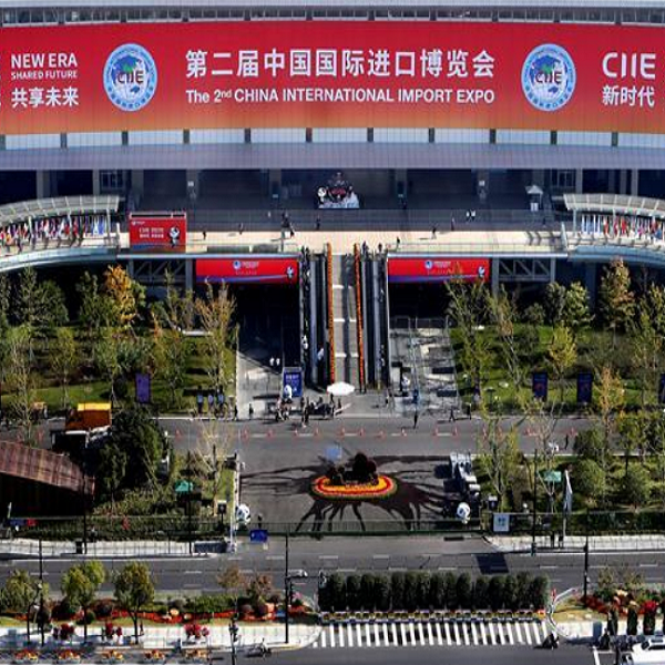 155 countries and regions, 26 international organizations attend 2nd CIIE in Shanghai Others