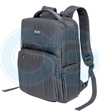 Laptop Backpack (ADB9018PG/2556)