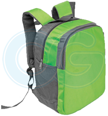 Laptop Backpack (BL4572PG/393)