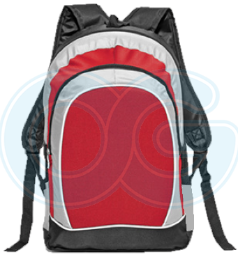 Laptop Backpack (BL4573PG/317)