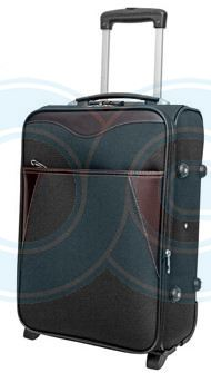 "Trolley Luggage 20"" (BL1027PG/1424)"
