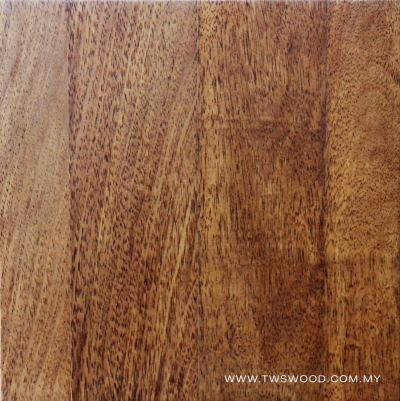 Solid Wood 0009
