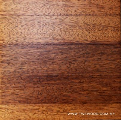 Solid Wood 0006
