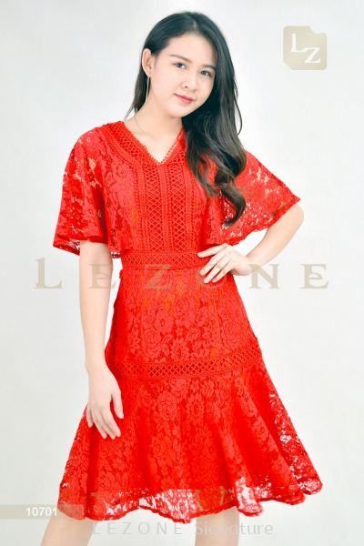 10701 Lace Overlay Sleeve Dress