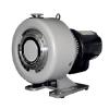 Agilent / Varian TriScroll 600 Dry Scroll Pumps Primary / Medium Vacuum Pumps