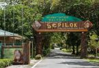 Sepilok Orangutan Rehabilitation Centre Sabah  Inbound