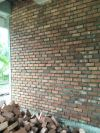wholesales of solid brick