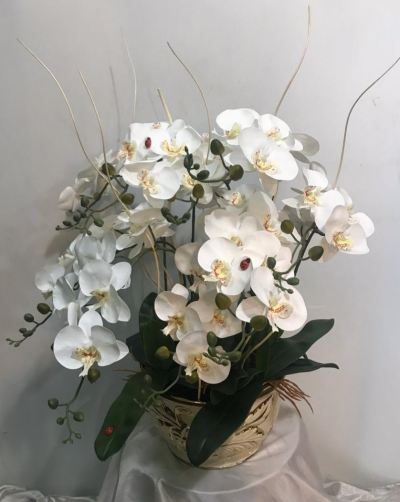 Artificial White Orchid plant (AOP-002)