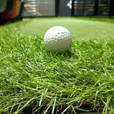 Spider - Portable Golf Putting Green W/O Slope 3' X 11'
