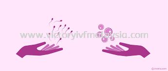 选择精子或卵子捐赠