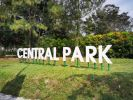 'Central Park' Box Up  EG Box Up