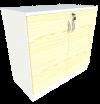 Low Cabinet Swing Door (Maple + White) Low Cabinet Swing Door Cabinets Loose Furniture