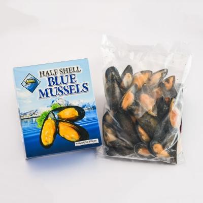 Half Shell Blue Mussel
