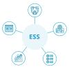 E-Leave /Employee self-service / E-Portal HR Software