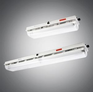 Zone 1 & 2 LED Linear / Fluorescent