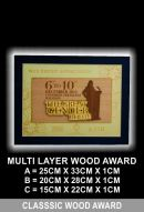 MULTI LAYER WOOD AWARD