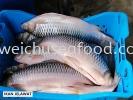 Ikan Jelawat Frozen Fish