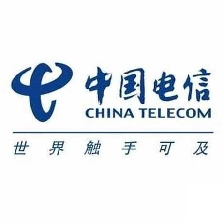 中国电信(马)有限公司 Member