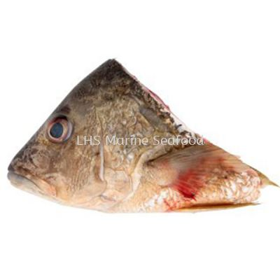 Fish Head Jenahak