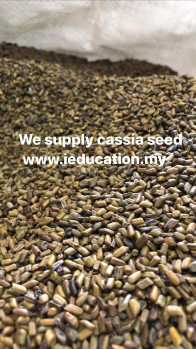 Cassia Seed 50kg