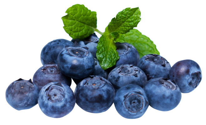 Blueberry Puree Mix