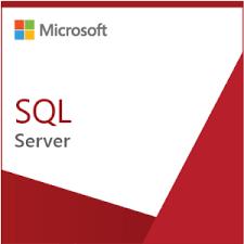 Microsoft SQL Server Enterprise Core SQLSvrEntCore 2019 SNGL OLP 2Lic NL CoreLic Qlfd