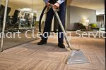 Carpet Cleaning Service Others