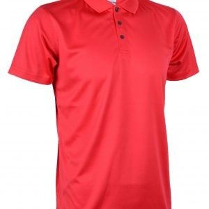 QDP-5312-Tomato-Red